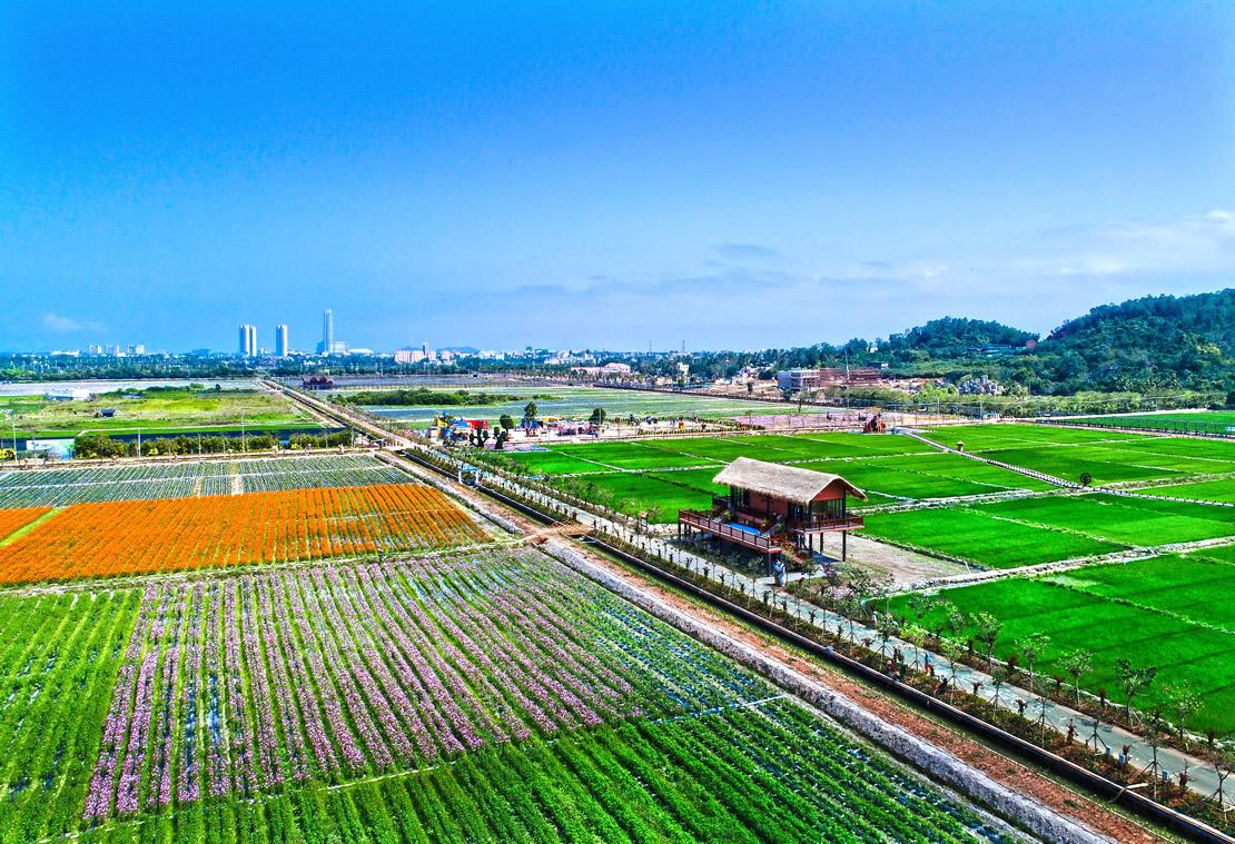 水稻国家公园