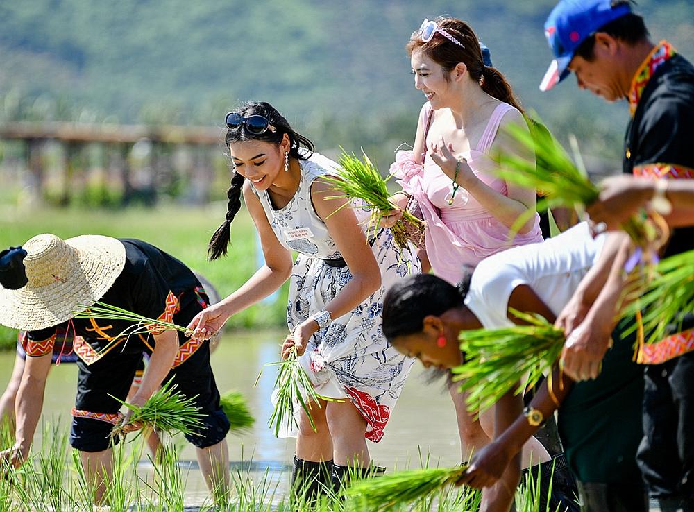 三亚水稻国家公园亲子欢乐好去处