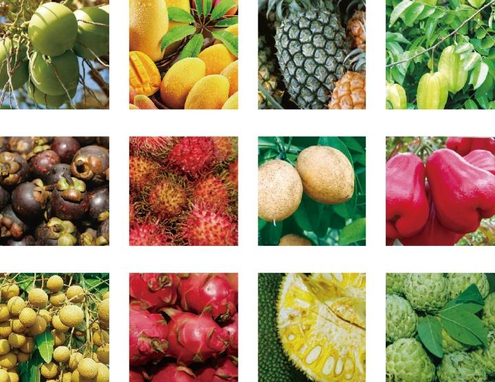 三亚天然的甜品——热带水果